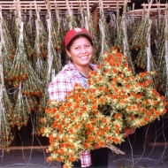 Hanging Flowers to Dry