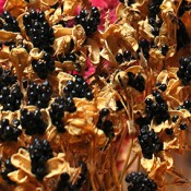 Dried Black Berry Lillies for Sale