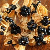 Dried Black Berry Lillies